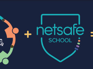 Evolving complexities & the Netsafe Kit