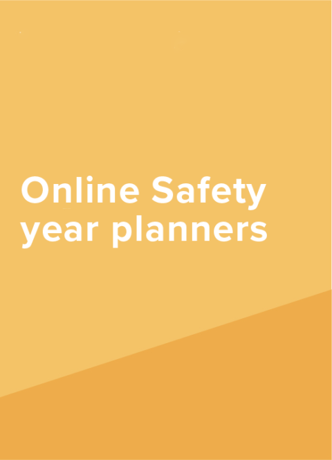 Online Safety Year Planners Link