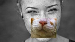 black and white closeup of girls face with a cat's nose and mouth overlaid on top
