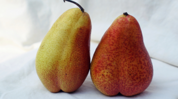 two suggestive pears leaning against each other